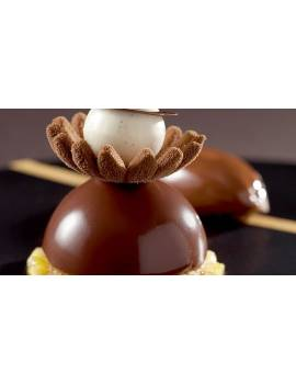 Beurre de Cacao Mycryo en poudre Cacao Barry 550 gr