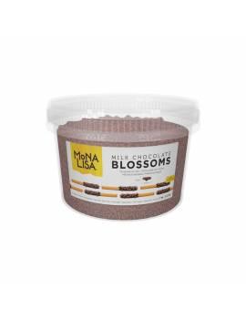 Micro copeaux MonaLisa Barry Chocolat lait 1kg